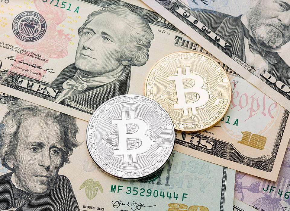Over $300? Pullback Likely for Surging Litecoin
